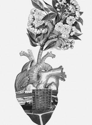 dům net srdce ořez